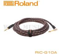 Инструментальный кабель Roland RIC-G10A
