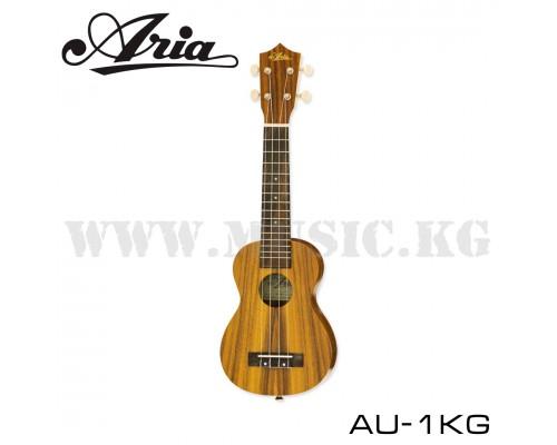 Aria AU-1KG