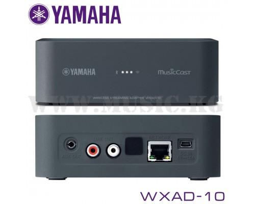 Yamaha WXAD-10 (MusicCast)