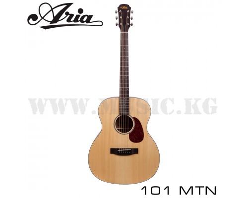 Акустическая гитара Aria 101 MTN