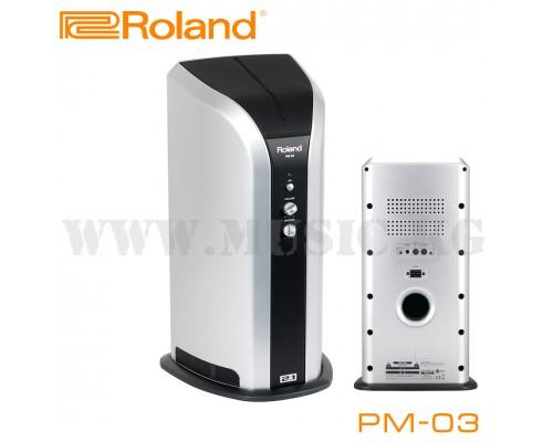 Монитор для цифровой ударной установки Roland PM-03