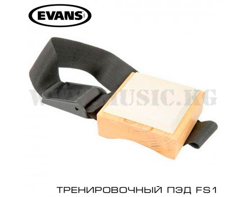 Evans FS1