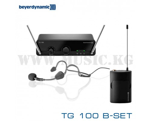 Радиосистема Beyerdynamic TG 100 B-Set
