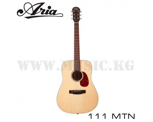 Акустическая гитара Aria 111 MTN