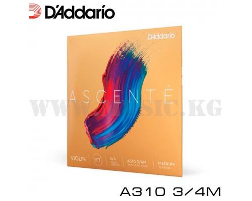 D'ADDARIO A310 3/4M